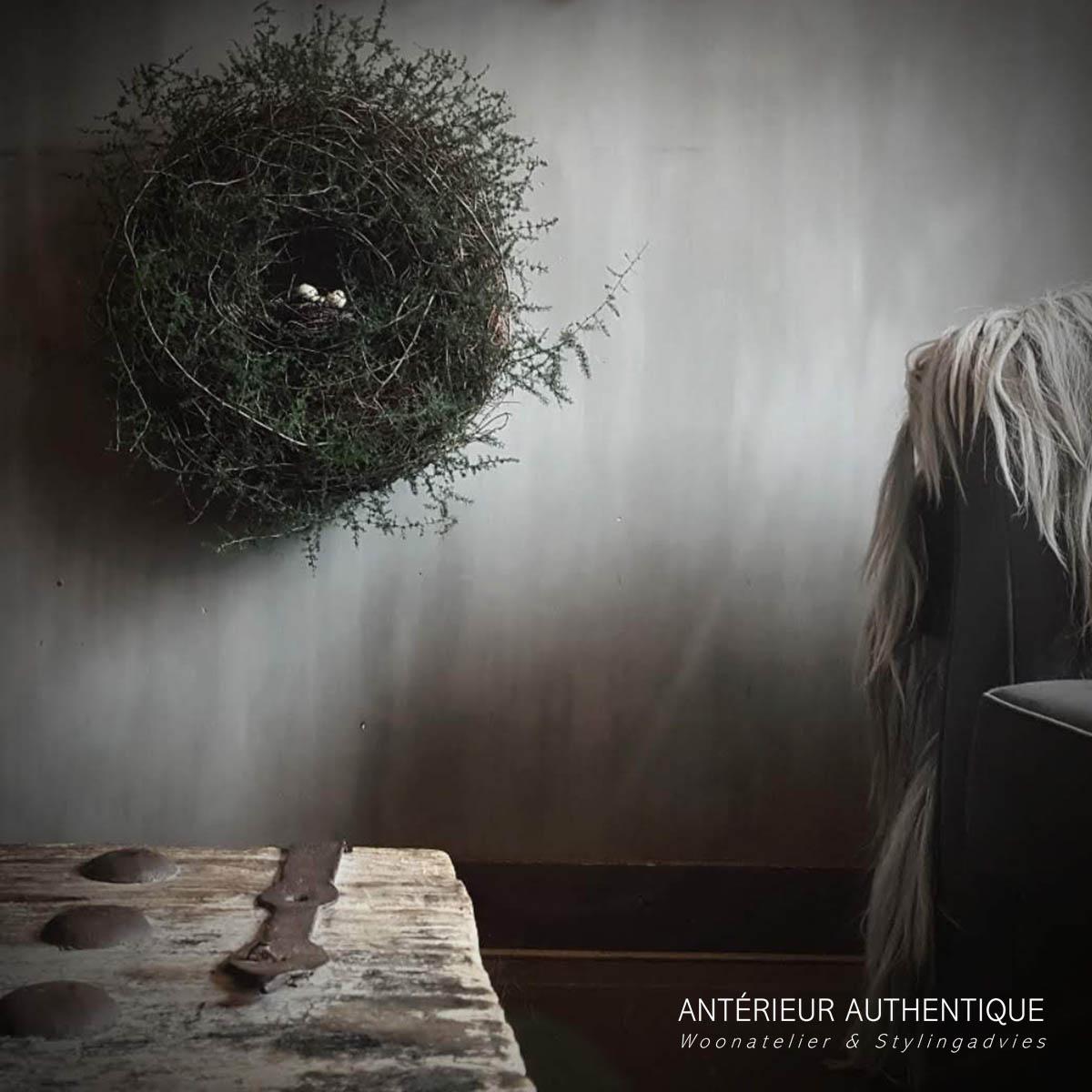 Afbeelding van krans wilde asparagus voor gebruik in webshop van Antérieur Authentique op de afbeelding hangend in woonkamer